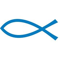 01 Acciuga o Alice (Engraulis encrasicolus) Pescato:Mediterraneo, Zona FAO:37 Metodo di pesca: Reti da circuizione (Lampare)